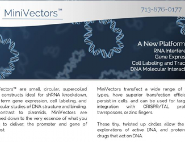 New MiniVector Product Literature Available