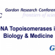 Gordon Research Conferences – DNA Topoisomerases in Biology & Medicine